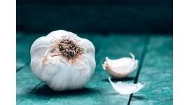 20 فایده سیر برای سلامتی