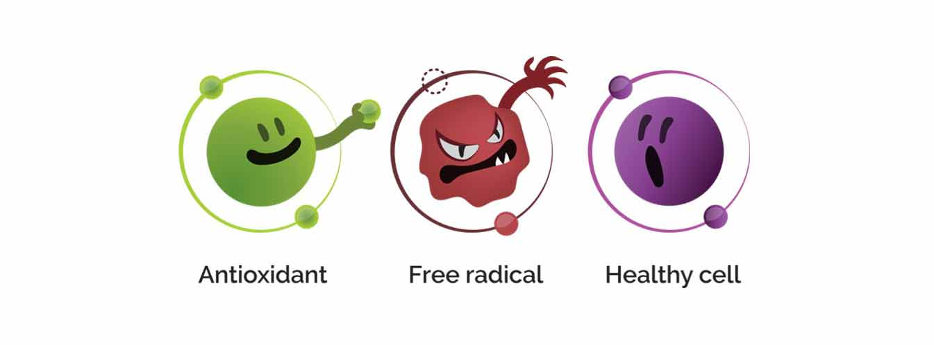 آنتی اکسیدان